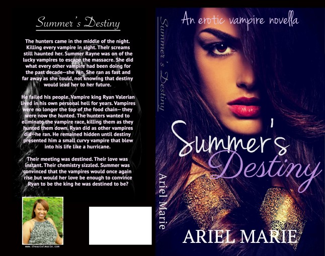 Summers Destiny Cover