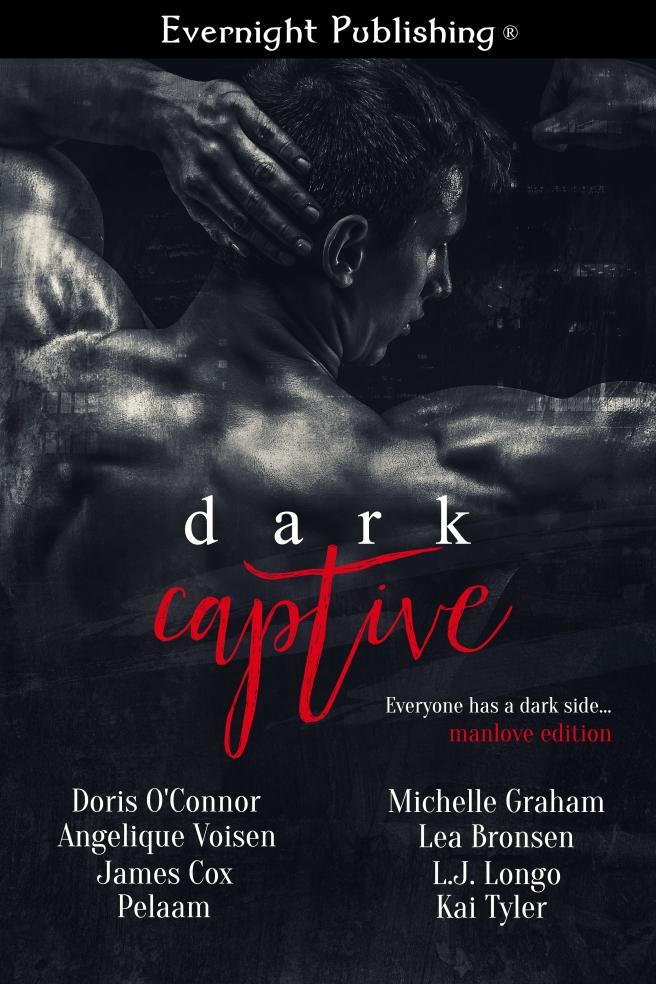 Dark-Captive2-Evernightpubishing-Jayaheer2016