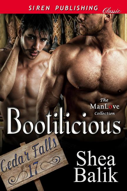 Bootilicious Cover