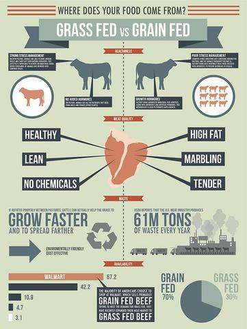 corn fed vs grass fed beef Many believe that grass fed beef is a healthier option than corn fed beef is everything we hear about grass fed beef true is corn fed beef really bad for you is there really that much of a difference between grass fed beef and corn fed beef.