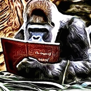 The Story Reading Ape