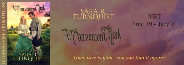 An Inconvenient Risk Tour Banner