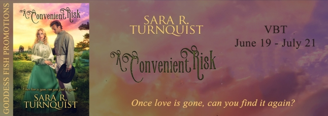 An Inconvenient Risk Tour Banner