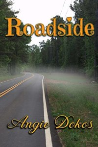 Roadside cover