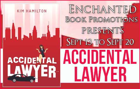 Accidental Lawyer banner