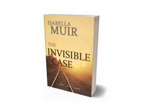 The Invisble Case 3D