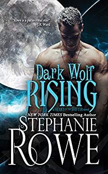 Dark Wolf cover