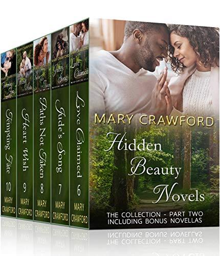 Hidden Beauty Novels P2 B2 cover