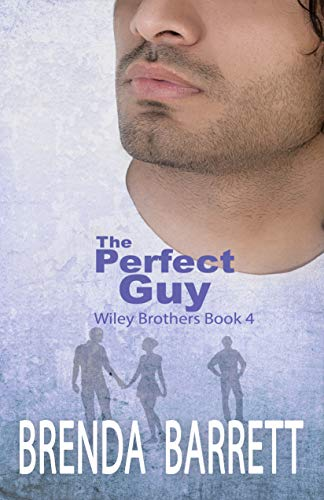 Perfect Guy Wiley Bros 4 cover