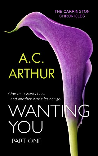 Wanting You 1 cover