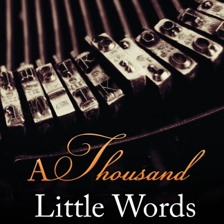 a thousand little words cover