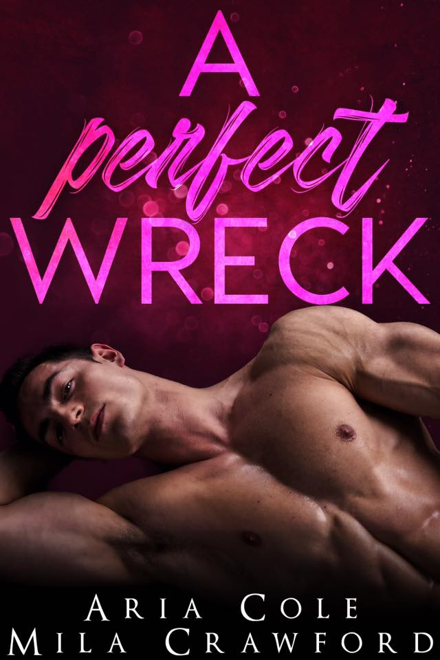 A Perfect Wreck cover