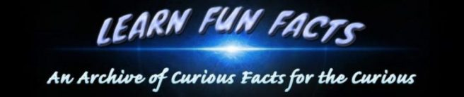 learn fun facts