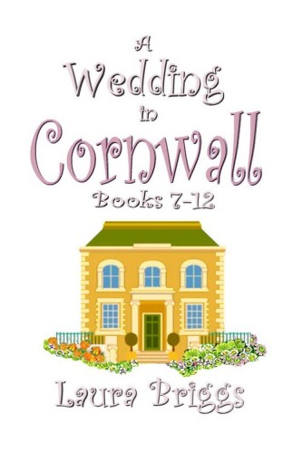 Wedding in Cornwall 7-12