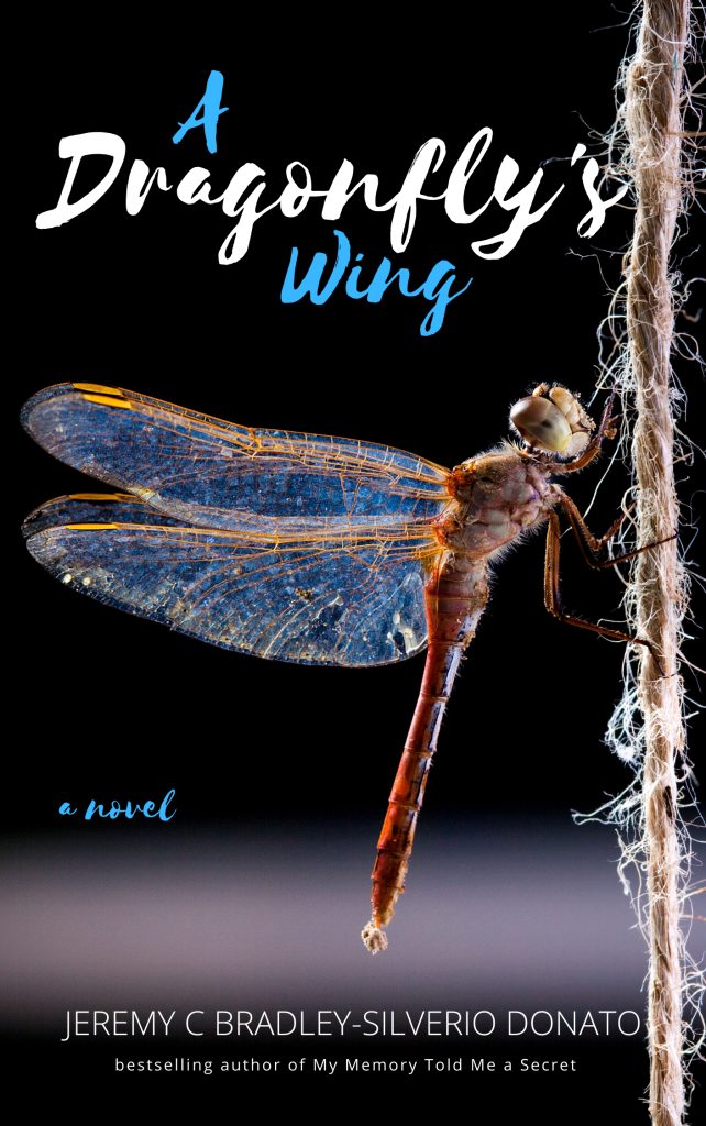Dragonfly cover