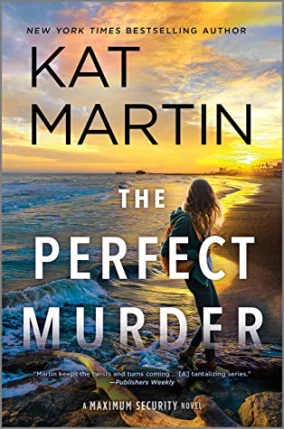 Perfect Murder cover